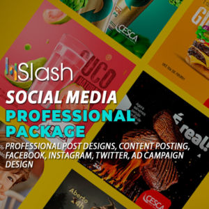 Social Media Professional Package